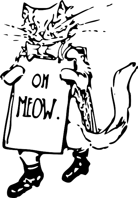 Canvas Seesack